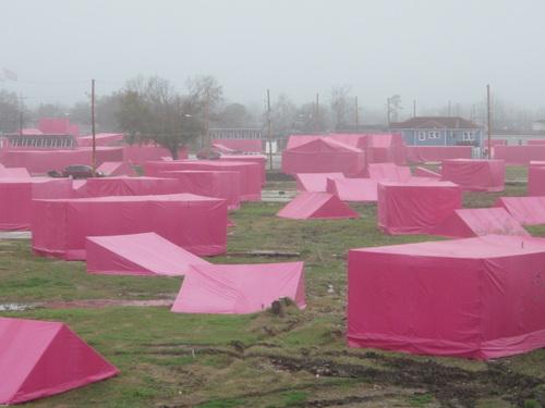Global Green Looking Pink